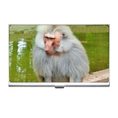 Grey Monkey Macaque Business Card Holder