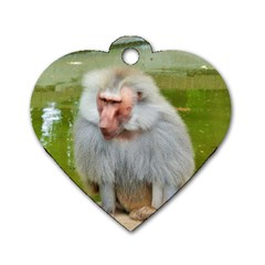 Grey Monkey Macaque Dog Tag Heart (two Sided)