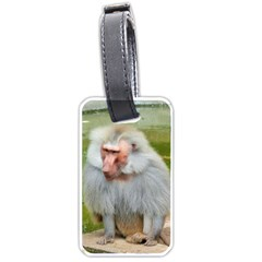 Grey Monkey Macaque Luggage Tag (one Side)