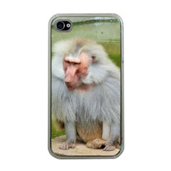 Grey Monkey Macaque Apple Iphone 4 Case (clear)