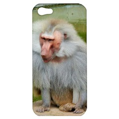 Grey Monkey Macaque Apple Iphone 5 Hardshell Case