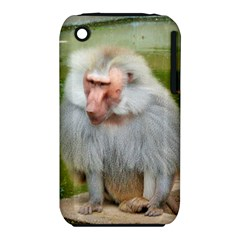 Grey Monkey Macaque Apple iPhone 3G/3GS Hardshell Case (PC+Silicone)