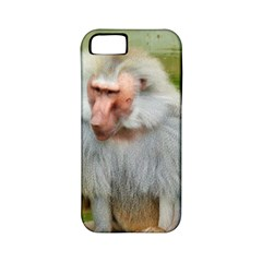 Grey Monkey Macaque Apple Iphone 5 Classic Hardshell Case (pc+silicone)