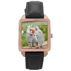 Grey Monkey Macaque Rose Gold Leather Watch