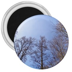 Large Trees In Sky 3  Button Magnet
