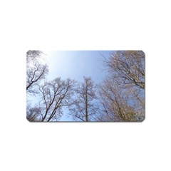 Large Trees In Sky Magnet (name Card)
