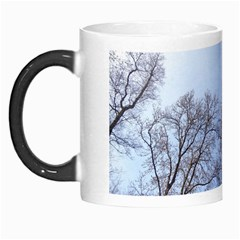 Large Trees In Sky Morph Mug