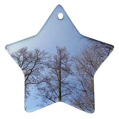 Large Trees In Sky Star Ornament (two Sides)