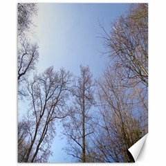 Large Trees In Sky Canvas 16  X 20  (unframed)