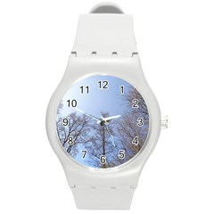 Large Trees In Sky Plastic Sport Watch (medium)