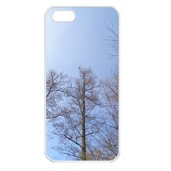 Large Trees In Sky Apple Iphone 5 Seamless Case (white)