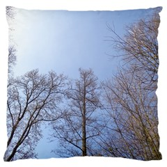 Large Trees in Sky Large Flano Cushion Case (One Side)