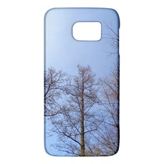 Large Trees In Sky Samsung Galaxy S6 Hardshell Case
