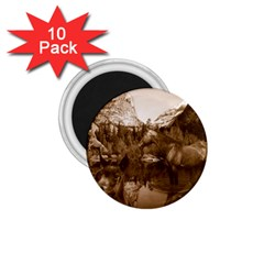 Native American 1 75  Button Magnet (10 Pack)