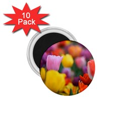 Flower 1 75  Button Magnet (10 Pack)