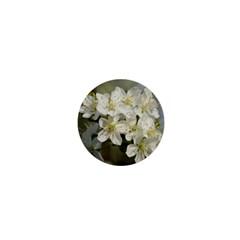 Spring Flowers 1  Mini Button