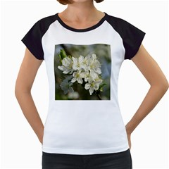 Spring Flowers Women s Cap Sleeve T Shirt (white)