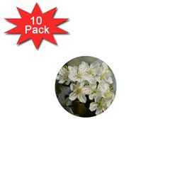 Spring Flowers 1  Mini Button Magnet (10 Pack)