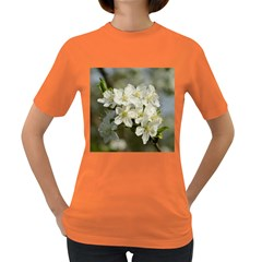 Spring Flowers Women s T Shirt (colored)