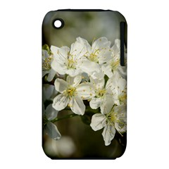 Spring Flowers Apple Iphone 3g/3gs Hardshell Case (pc+silicone)