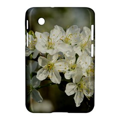 Spring Flowers Samsung Galaxy Tab 2 (7 ) P3100 Hardshell Case