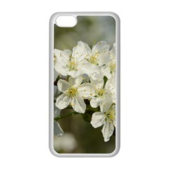Spring Flowers Apple Iphone 5c Seamless Case (white)