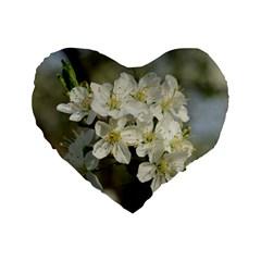 Spring Flowers Standard 16  Premium Flano Heart Shape Cushion