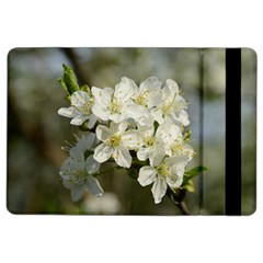 Spring Flowers Apple iPad Air 2 Flip Case