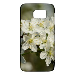 Spring Flowers Samsung Galaxy S6 Hardshell Case