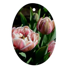 Tulips Oval Ornament