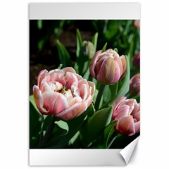 Tulips Canvas 12  X 18  (unframed)