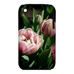 Tulips Apple Iphone 3g/3gs Hardshell Case (pc+silicone)