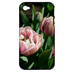 Tulips Apple Iphone 4/4s Hardshell Case (pc+silicone)