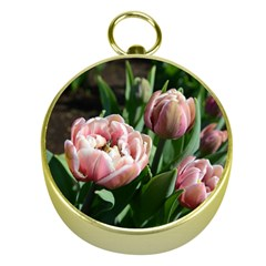 Tulips Gold Compass