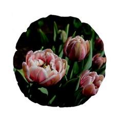 Tulips Standard 15  Premium Flano Round Cushion