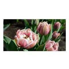 Tulips Satin Shawl