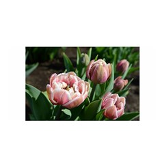 Tulips Satin Wrap