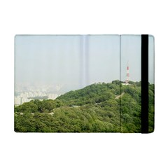 Seoul Apple Ipad Mini 2 Flip Case
