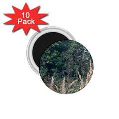 Grass And Trees Nature Pattern 1 75  Button Magnet (10 Pack)