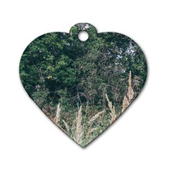Grass And Trees Nature Pattern Dog Tag Heart (one Sided)