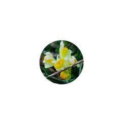 Linaria 1  Mini Button Magnet