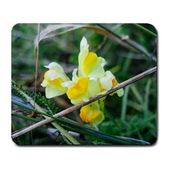 Linaria Large Mouse Pad (rectangle)
