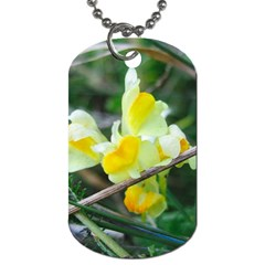 Linaria Dog Tag (one Sided)