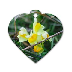 Linaria Dog Tag Heart (one Sided)