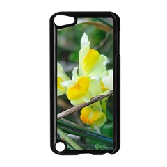 Linaria Apple Ipod Touch 5 Case (black)