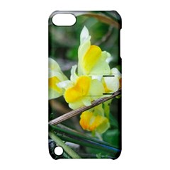 Linaria Apple Ipod Touch 5 Hardshell Case With Stand