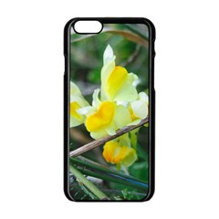 Linaria Apple Iphone 6 Black Enamel Case