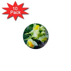 Linaria Flower 1  Mini Button (10 Pack)