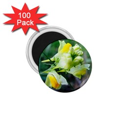 Linaria Flower 1 75  Button Magnet (100 Pack)