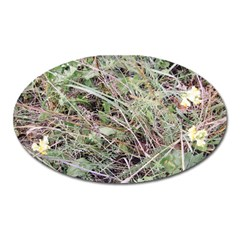 Linaria Grass Pattern Magnet (oval)